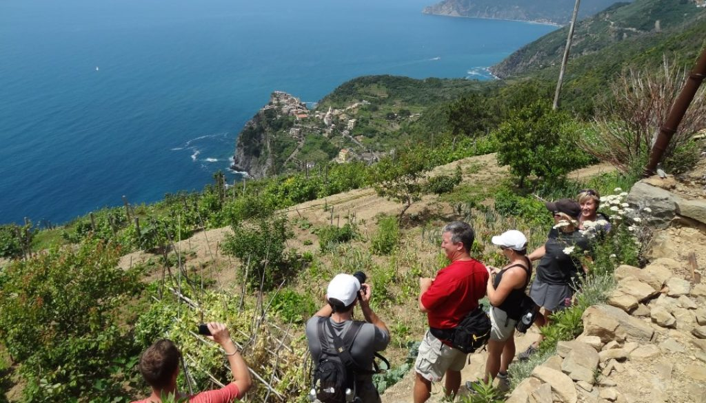cinque terre walks footpath