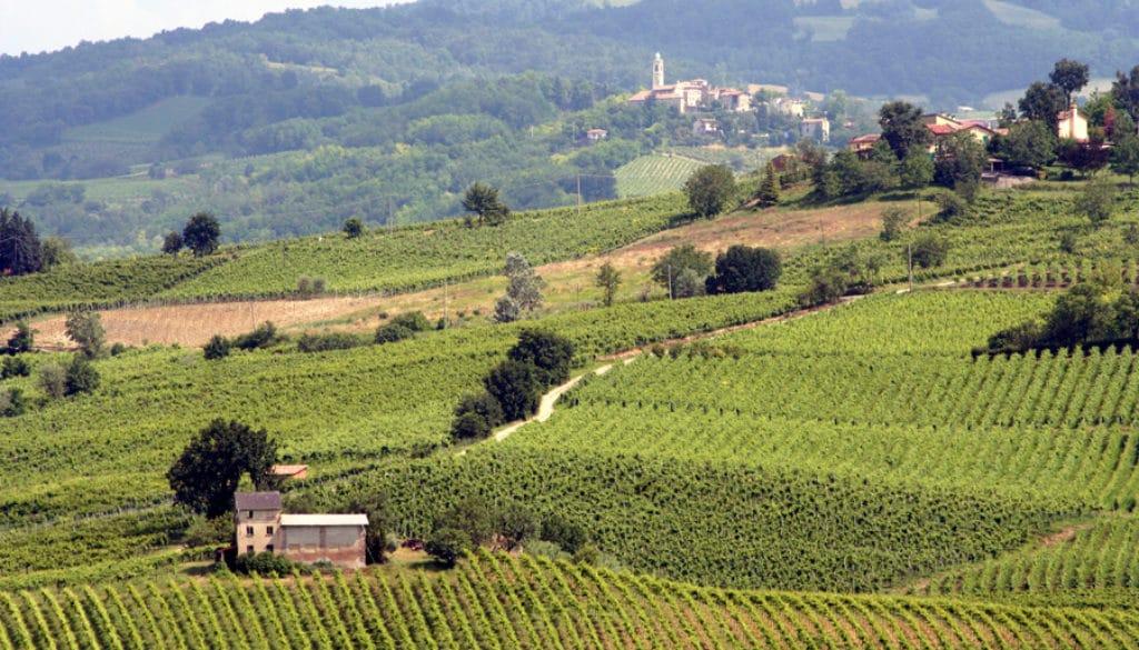milan wine region oltrepo